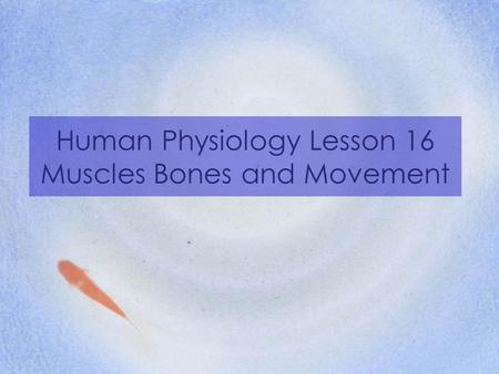 Human Physiology Lesson 16 Muscles Bones and Movement.