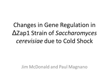 Changes in Gene Regulation in Δ Zap1 Strain of Saccharomyces cerevisiae due to Cold Shock Jim McDonald and Paul Magnano.