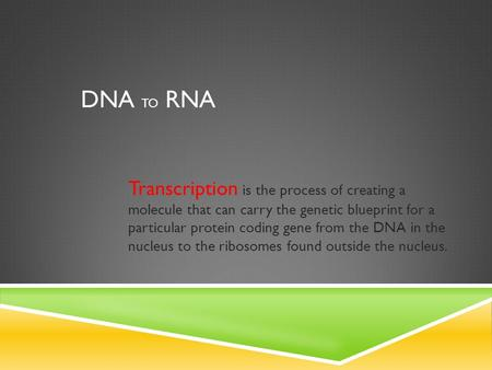 DNA TO RNA Transcription is the process of creating a molecule that can carry the genetic blueprint for a particular protein coding gene from the DNA.