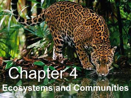 Ecosystems and Communities Chapter 4. 4–1 The Role of Climate.