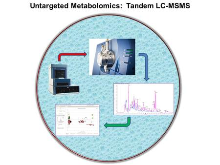 Untargeted Metabolomics: Tandem LC-MSMS. Column and Flow Rate Selection Insert Barnes table for flow rates and sensitivity gain. Reverse Phase and Normal.