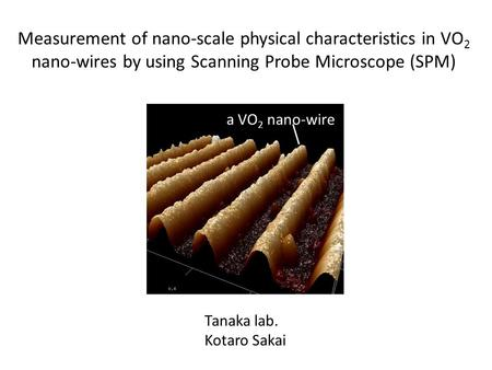 Measurement of nano-scale physical characteristics in VO 2 nano-wires by using Scanning Probe Microscope (SPM) Tanaka lab. Kotaro Sakai a VO 2 nano-wire.