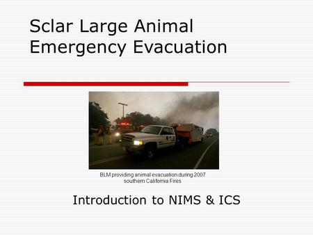 Sclar Large Animal Emergency Evacuation Introduction to NIMS & ICS BLM providing animal evacuation during 2007 southern California Fires.