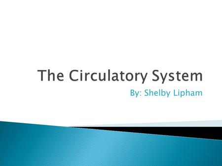 By: Shelby Lipham  The circulatory system is made up of the muscles and vessels that help control the flow of blood around the body. This process is.