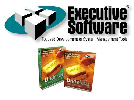 Founded in 1981, Executive Software is the industry leader in system performance software for Windows NT/2000/XP and DEC VMS systems. Developed Diskeeper,