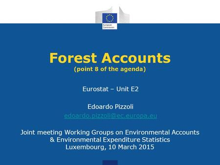 Joint meeting Working Groups on Environmental Accounts & Environmental Expenditure Statistics Luxembourg, 10 March 2015 Forest Accounts (point 8 of the.