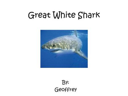 Great White Shark By: Geoffrey.