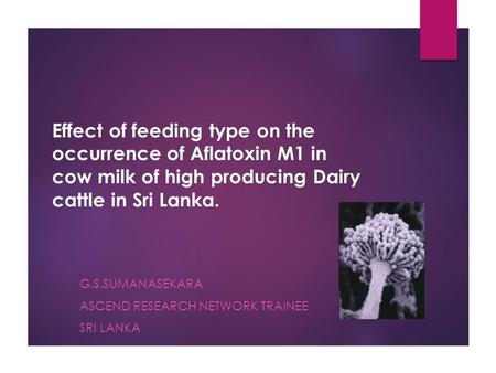 Effect of feeding type on the occurrence of Aflatoxin M1 in cow milk of high producing Dairy cattle in Sri Lanka. G.S.SUMANASEKARA ASCEND RESEARCH NETWORK.