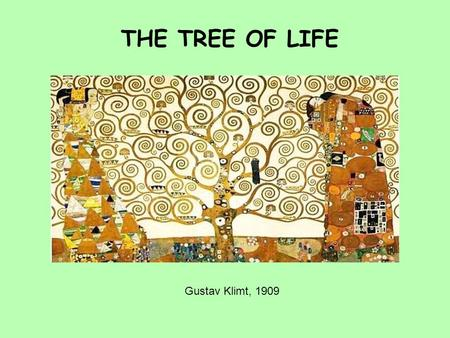 THE TREE OF LIFE Gustav Klimt, 1909. OFTEN, THE RELATIONSHIP BETWEEN SPECIES THROUGH EVOLUTION IS PICTURED AS A TREE WITH THE ANCESTOR SPECIES LOWER ON.