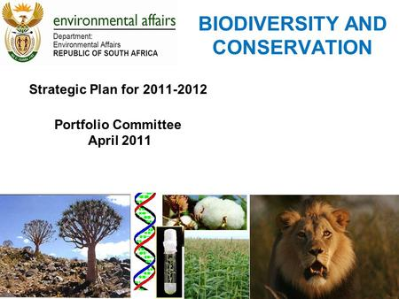 BIODIVERSITY AND CONSERVATION Strategic Plan for 2011-2012 Portfolio Committee April 2011.