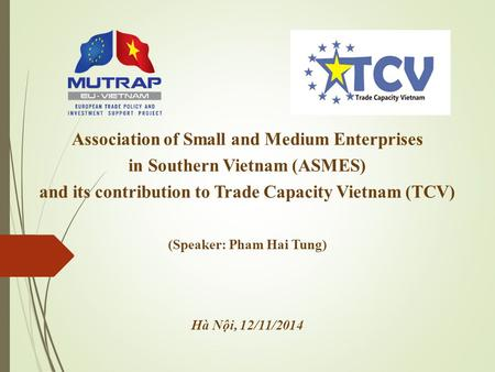 Association of Small and Medium Enterprises in Southern Vietnam (ASMES) and its contribution to Trade Capacity Vietnam (TCV) (Speaker: Pham Hai Tung) Hà.