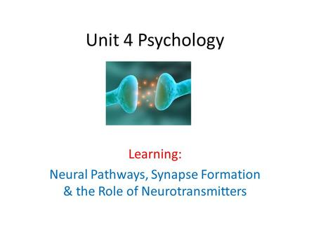 Unit 4 Psychology Learning: Neural Pathways, Synapse Formation & the Role of Neurotransmitters.