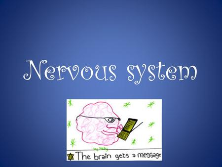 Nervous system. Nervous System The Nervous System works with other body systems to help organisms respond to stimuli. Stimuli are changes in the environment.
