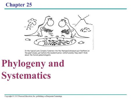 Copyright © 2005 Pearson Education, Inc. publishing as Benjamin Cummings Chapter 25 Phylogeny and Systematics.