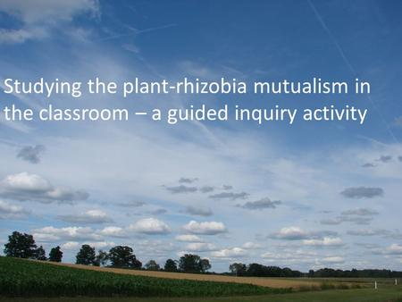 Studying the plant-rhizobia mutualism in the classroom – a guided inquiry activity Sandy.