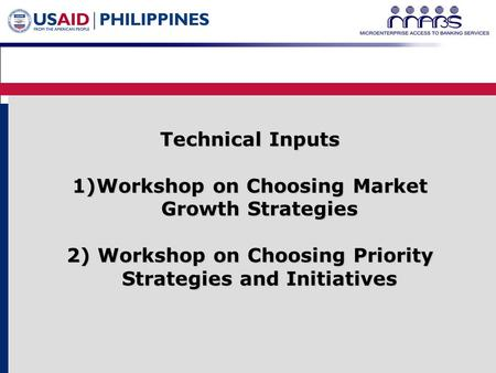1 Technical Inputs 1)Workshop on Choosing Market Growth Strategies 2) Workshop on Choosing Priority Strategies and Initiatives.