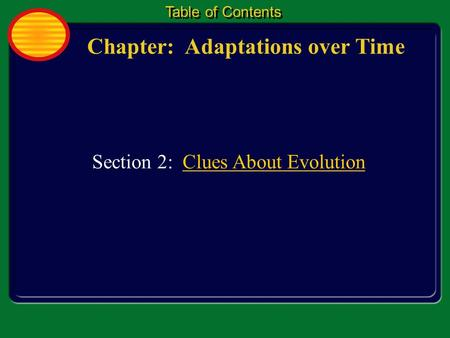 Chapter: Adaptations over Time