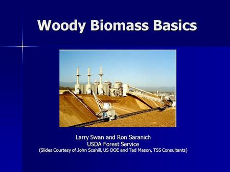 Woody Biomass Basics Larry Swan and Ron Saranich USDA Forest Service (Slides Courtesy of John Scahill, US DOE and Tad Mason, TSS Consultants)