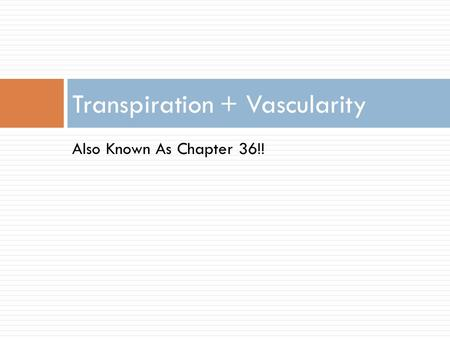 Also Known As Chapter 36!! Transpiration + Vascularity.