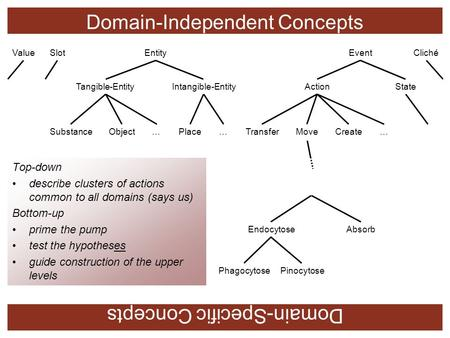 Domain-Independent Concepts Domain-Specific Concepts SlotEntityEventValueCliché ActionStateIntangible-EntityTangible-Entity ObjectSubstance…Place…Transfer…CreateMove.