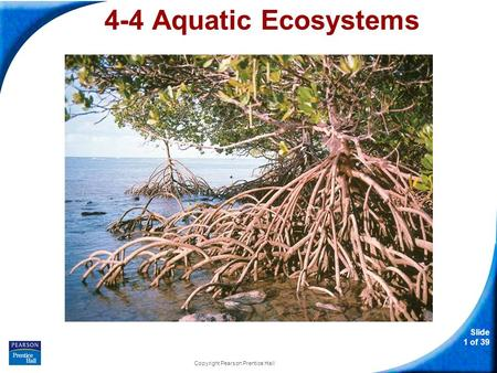 Slide 1 of 39 Copyright Pearson Prentice Hall 4-4 Aquatic Ecosystems.