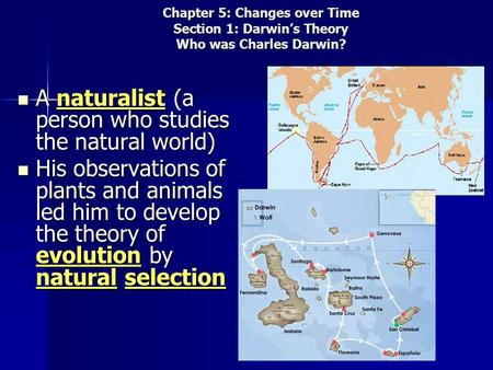 Chapter 5: Changes over Time Section 1: Darwin's Theory Who was Charles Darwin? A naturalist (a person who studies the natural world) A naturalist (a person.