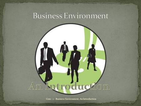 An Introduction Business Environment