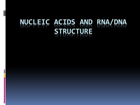 Nucleic Acid Structure Nitrogenous Bases (Nucleosides)