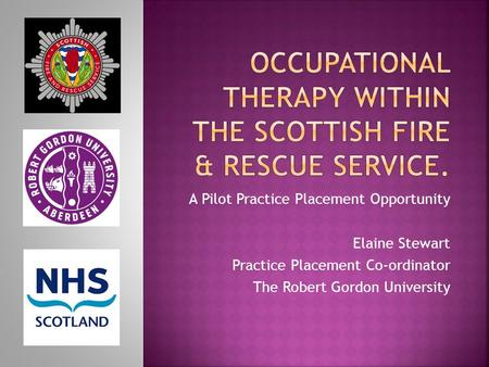 A Pilot Practice Placement Opportunity Elaine Stewart Practice Placement Co-ordinator The Robert Gordon University.