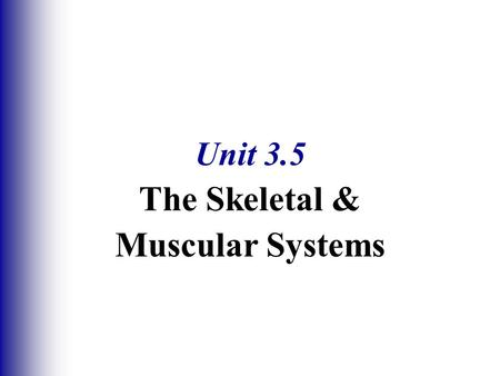 Unit 3.5 The Skeletal & Muscular Systems. Functions of Bones  Support of the body  Protection of soft organs  Movement due to attached skeletal muscles.