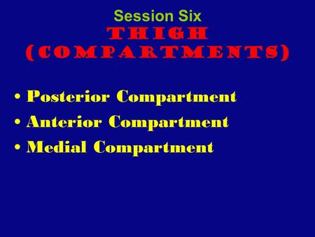 Session Six Thigh (Compartments) Posterior Compartment Anterior Compartment Medial Compartment.