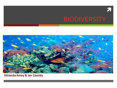  BIODIVERSITY Miranda Amey & Ian Cassidy. What is Biodiversity?  Biodiversity is the variety of life in the world or in a particular habitat or ecosystem.