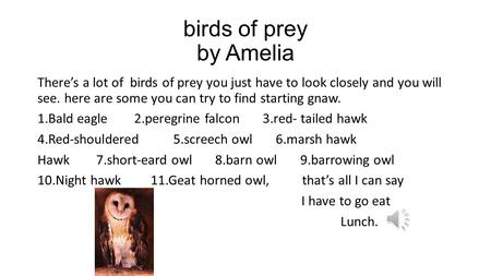 birds of prey by Amelia There's a lot of birds of prey you just have to look closely and you will see. here are some you can try to find starting gnaw.