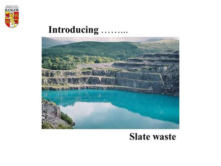 Introducing ……... Slate waste. EU Life-Environment funded project: Sustainable post-industrial land restoration and re- creation of high biodiversity.