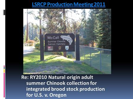 LSRCP Production Meeting 2011 Re: RY2010 Natural origin adult summer Chinook collection for integrated brood stock production for U.S. v. Oregon.