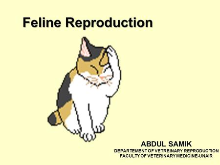 Feline Reproduction ABDUL SAMIK DEPARTEMENT OF VETREINARY REPRODUCTION