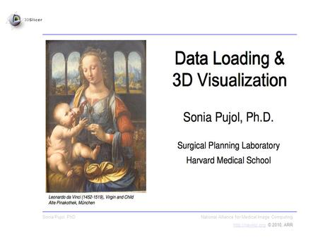 Sonia Pujol, PhD National Alliance for Medical Image Computing  © 2010, ARR.