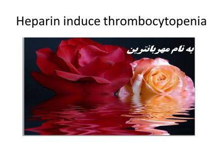 Heparin induce thrombocytopenia. Presented by the American Society of Hematology, adapted in part from the: American College of Chest Physicians Evidence-Based.