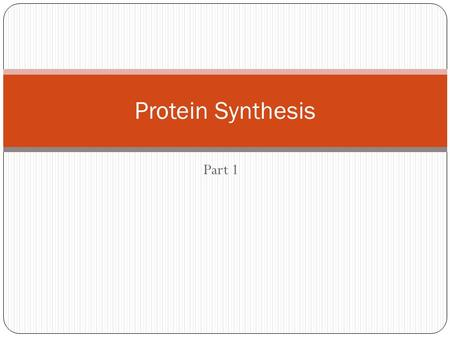 Part 1 Protein Synthesis. DNA replication vs. Protein Synthesis DNA ReplicationProtein Synthesis Produces...well.. DNA Occurs in order for mitosis or.