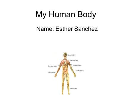 My Human Body Name: Esther Sanchez. The Brain Insert facts you leaned about the brain you may also insert 1-2 pictures The brain is in the top part of.