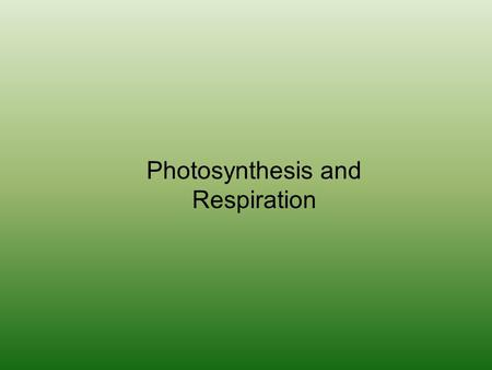 Photosynthesis and Respiration. What is Photosynthesis?? Plants using sunlight (energy), carbon dioxide, and water to make food and oxygen.