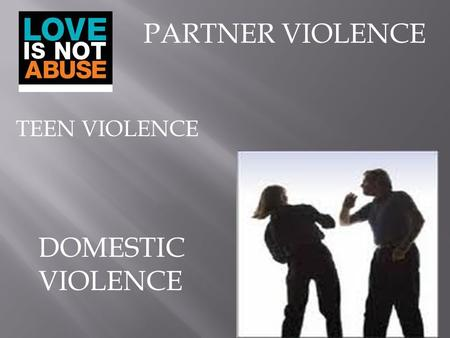 PARTNER VIOLENCE DOMESTIC VIOLENCE TEEN VIOLENCE.