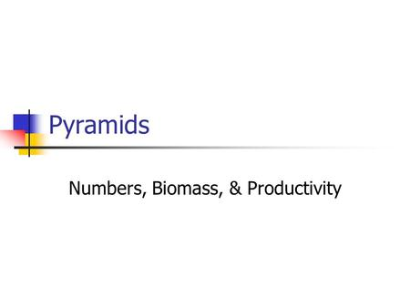 Pyramids Numbers, Biomass, & Productivity. FOOD CHAINS AND PYRAMIDS Pyramid diagrams give information about the organisms in a food chain: numbers of.
