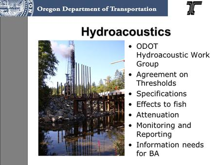 Hydroacoustics ODOT Hydroacoustic Work Group Agreement on Thresholds Specifications Effects to fish Attenuation Monitoring and Reporting Information needs.