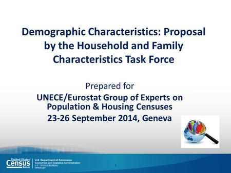 Demographic Characteristics: Proposal by the Household and Family Characteristics Task Force Prepared for UNECE/Eurostat Group of Experts on Population.
