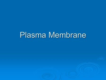 Plasma Membrane. Cell Membrane 1. What is the special lipid found in the plasma membrane? 2. What do you think makes up the plasma membrane?