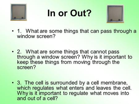In or Out? 1. 	What are some things that can pass through a window screen? 2. 	What are some things that cannot pass through a window screen? Why is it.