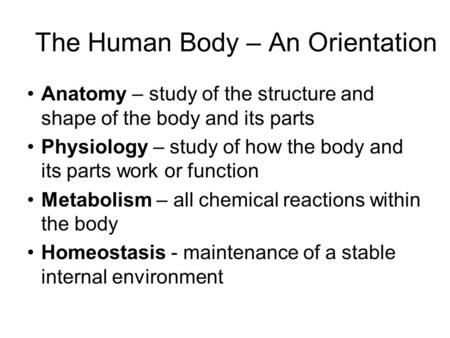 The Human Body – An Orientation Anatomy – study of the structure and shape of the body and its parts Physiology – study of how the body and its parts work.