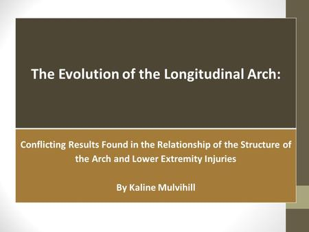 The Evolution of the Longitudinal Arch: