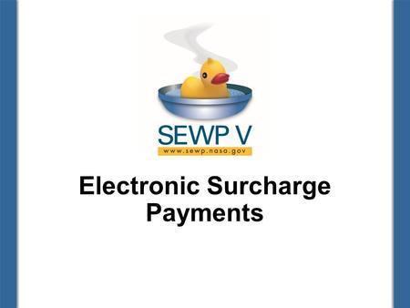 Electronic Surcharge Payments. Finance Team Theresa Kinney, Financial Manager Patrice Hall, Business Analyst Sydne Kersey, Data Analyst 2.